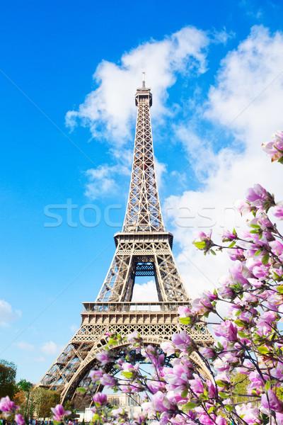 eiffel tower, France Stock photo © neirfy