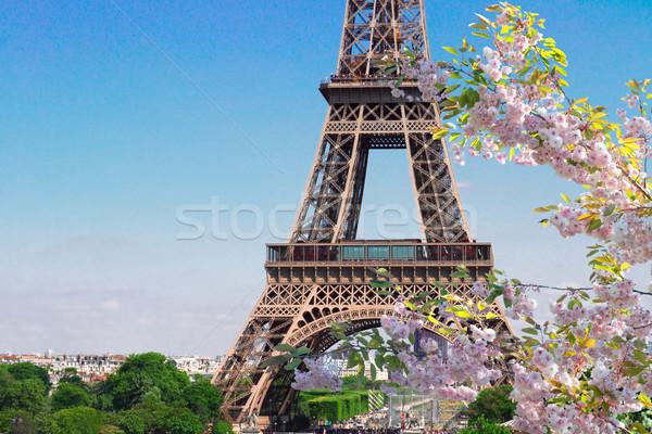Eyfel Kulesi Paris Cityscape ünlü ayrıntılar Stok fotoğraf © neirfy