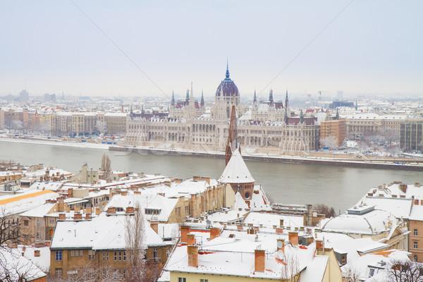 house of  parliament, Budapest, Hungary Stock photo © neirfy
