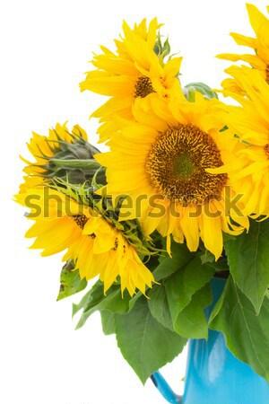 sunflowers  and calendula flowers Stock photo © neirfy