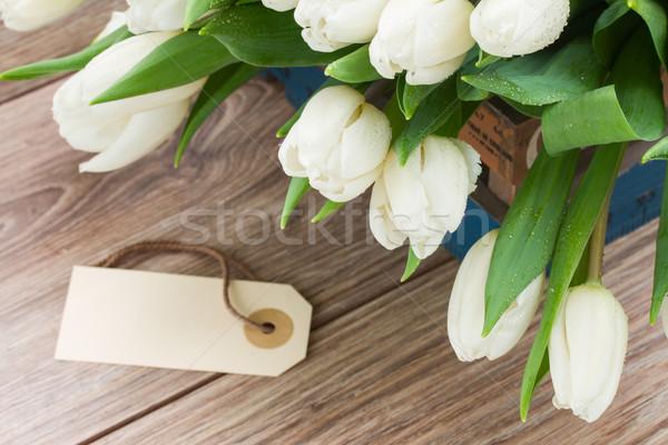 pile  of white  tulips Stock photo © neirfy