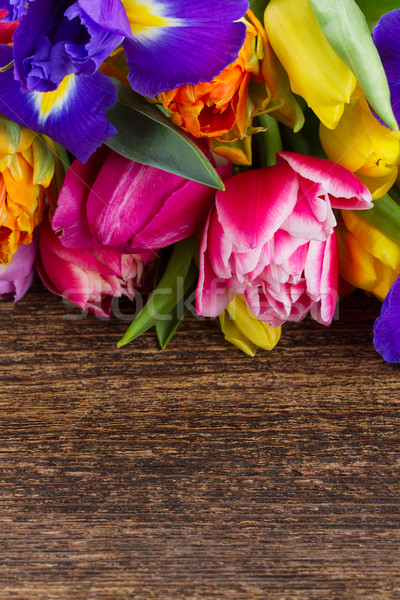 Stockfoto: Voorjaar · tulpen · Pasen · bloem · Blauw · Rood