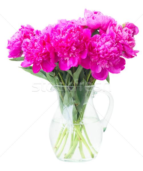 Stock photo: Bright pink peony flowers