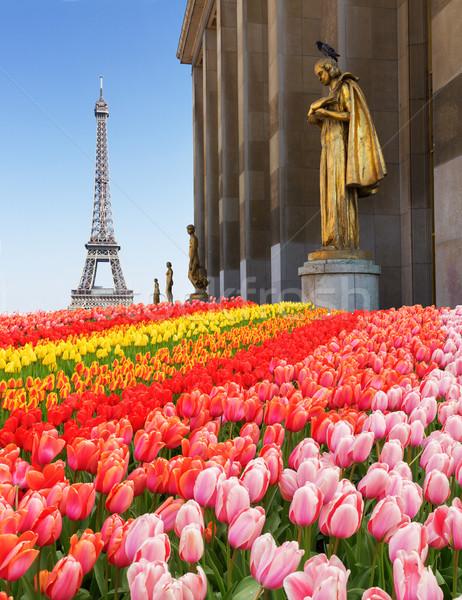 Eiffel turné kert randizás Párizs Franciaország Stock fotó © neirfy