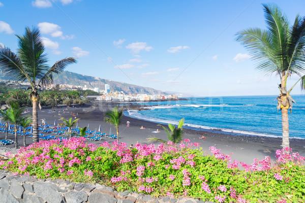 La tenerife célèbre plage jardin Espagne Photo stock © neirfy