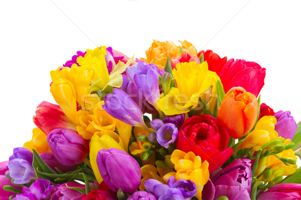 bouquet of bright spring flowers Stock photo © neirfy