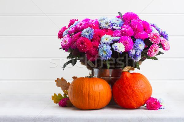 Düşmek krizantem çiçekler buket pembe mavi Stok fotoğraf © neirfy