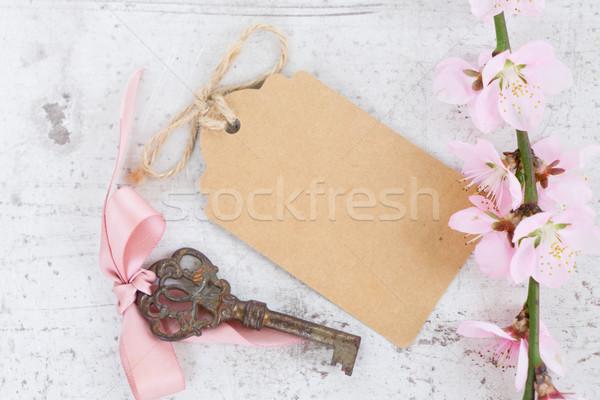 Foto stock: Primavera · árvore · flores · rosa · papel · cartão
