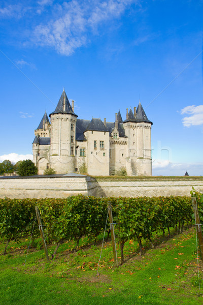 Saumur castle in the Loire Valley Stock photo © neirfy