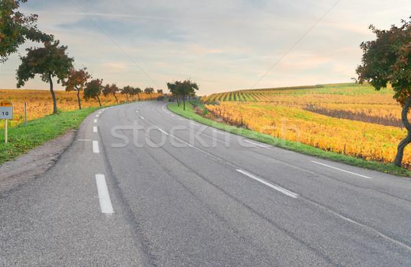 şarap rota yol sonbahar Fransa alan Stok fotoğraf © neirfy