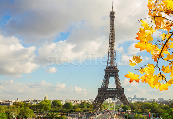 Eiffel turné domb ág ősz fa Stock fotó © neirfy