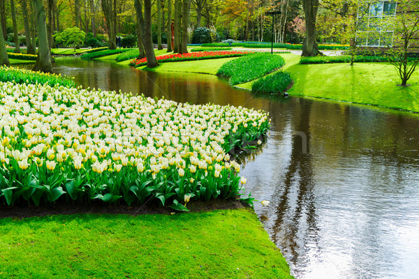 Primavera stagno giardino fiume curve verde Foto d'archivio © neirfy