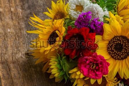 Colorat Toamnă Flori Fundal Frumos Imagine De Stoc