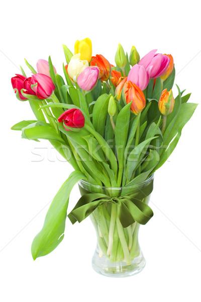 Foto stock: Flores · da · primavera · vaso · fresco · primavera · tulipas · isolado