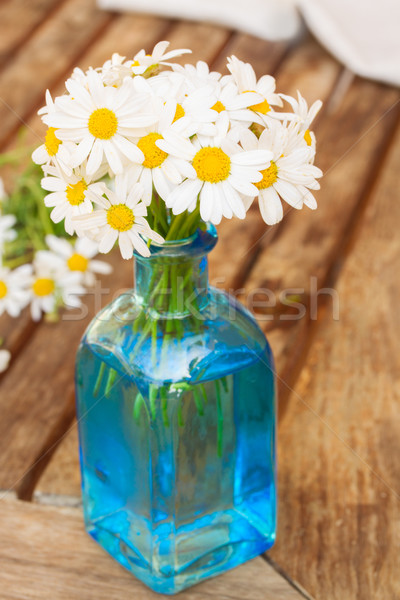 Daisy fleurs bleu verre pot printemps Photo stock © neirfy