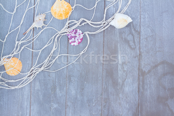 fishing net on wooden background Stock photo © neirfy
