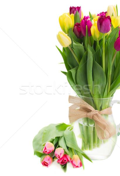 Bukiet żółty fioletowy tulipan kwiaty Zdjęcia stock © neirfy