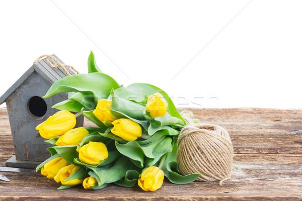 Gelb Tulpen Vogelkäfig hellen Grenze isoliert Stock foto © neirfy