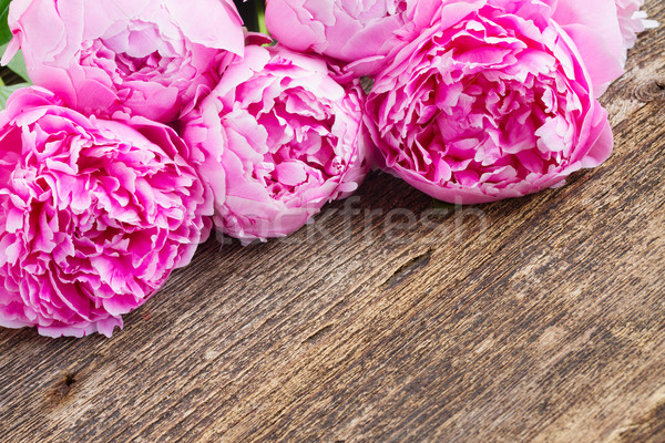 pink peony on wood Stock photo © neirfy
