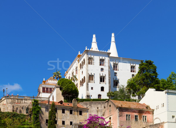 National palace of Sintra, Portugal Stock photo © neirfy