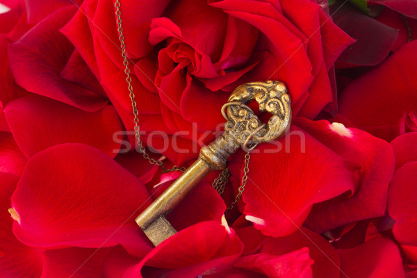 Key with the heart as a symbol of love Stock photo © neirfy
