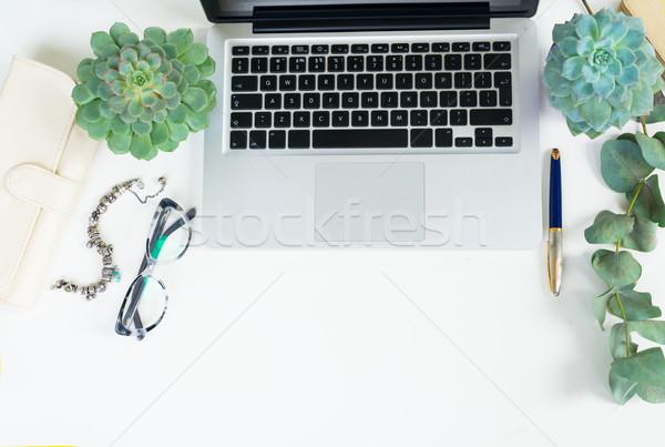 Escritorio escena verde plantas hasta Foto stock © neirfy