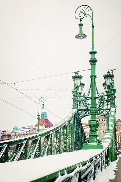 Hörcsög híd Budapest hó tél Magyarország Stock fotó © neirfy