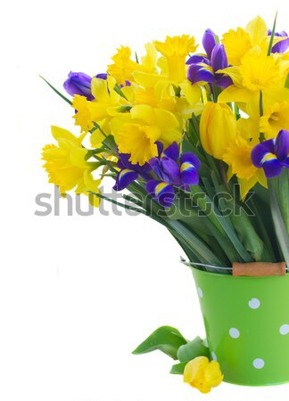 daffodils with catkins and easter eggs Stock photo © neirfy