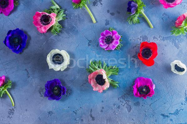 Flores pedra fresco colorido padrão cinza Foto stock © neirfy