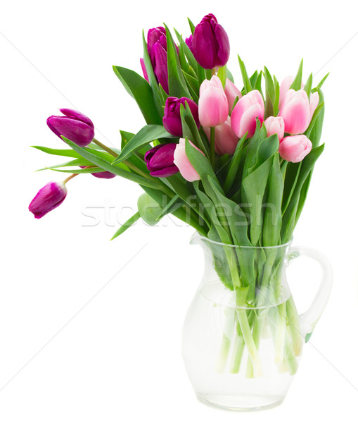 pink   and violet tulips bouquet Stock photo © neirfy