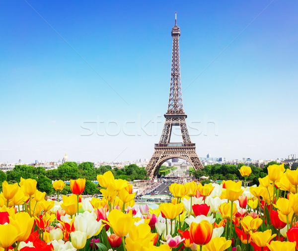 Эйфелева башня Париж Cityscape Skyline весны Сток-фото © neirfy