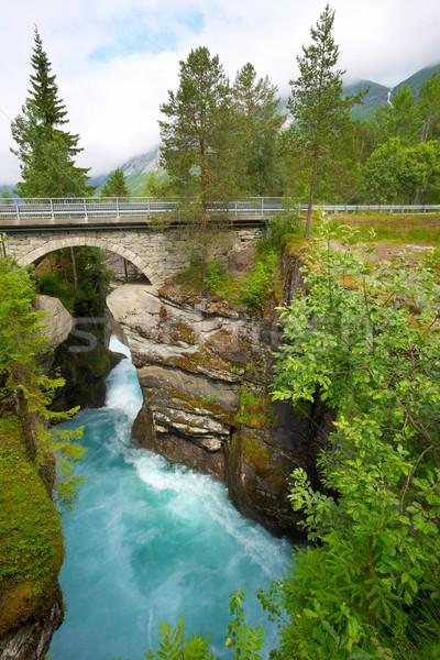 Bridge over fast river Stock photo © Nejron