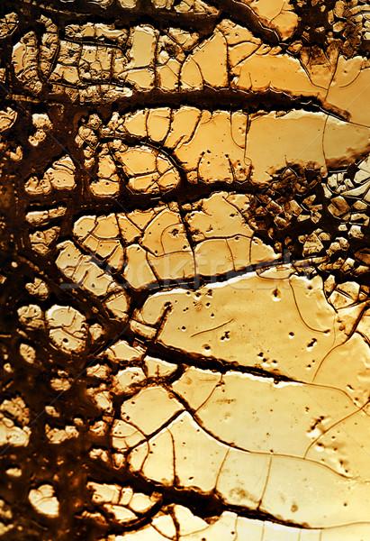 аннотация гранж текстур текстуры краской фон металл Сток-фото © Nejron