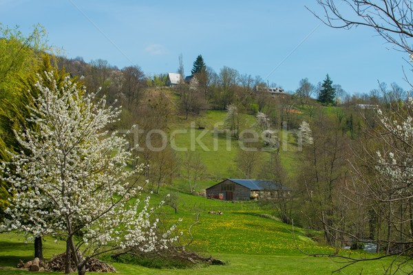 Rural houses on a hill in beautiful landscape Stock photo © Nejron