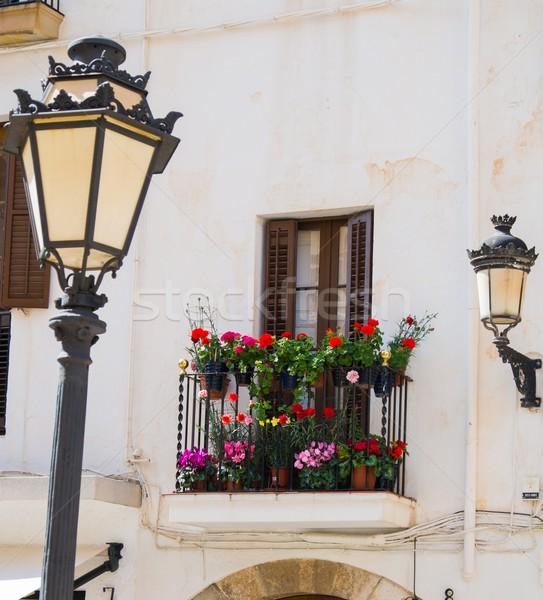 здании фасад красивой балкона полный цветок Сток-фото © Nejron