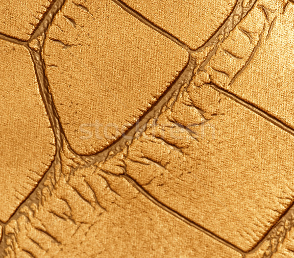 Picture of a genuine leather texture