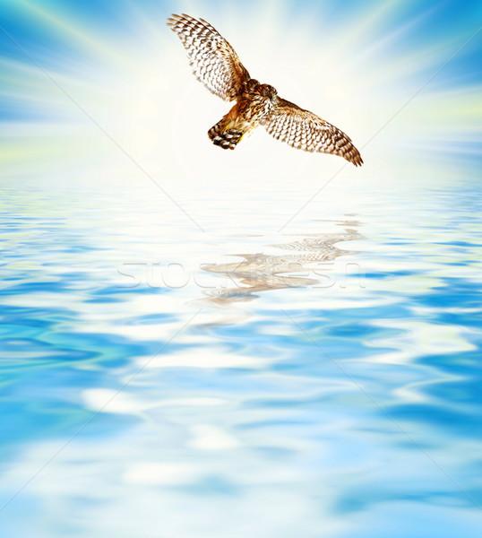 Beautiful sea scenic Stock photo © Nejron