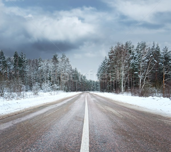Foto d'archivio: Bella · inverno · scenico · albero · panorama · neve