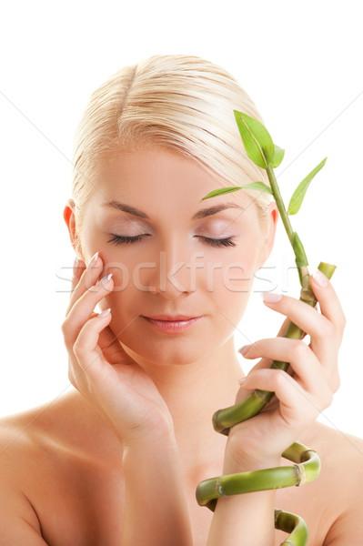 Bela mulher bambu planta mulher menina mãos Foto stock © Nejron