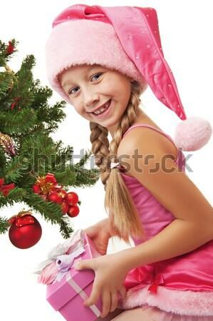 Mrs. Santa with Christmas decoration Stock photo © Nejron