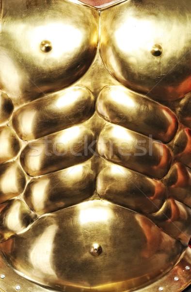 Közelkép arany páncél textúra fém mell Stock fotó © Nejron