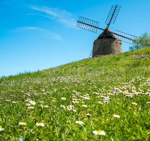 Old windmill on a beautiful flower hill Stock photo © Nejron
