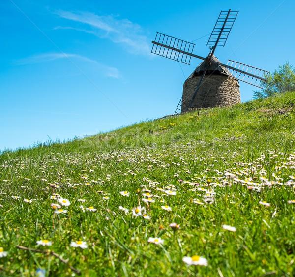 Oude windmolen mooie bloem heuvel natuur Stockfoto © Nejron