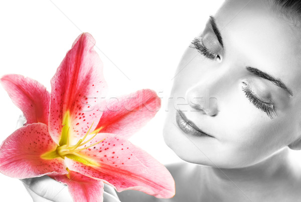 Сток-фото: красивой · розовый · Лилия · портрет