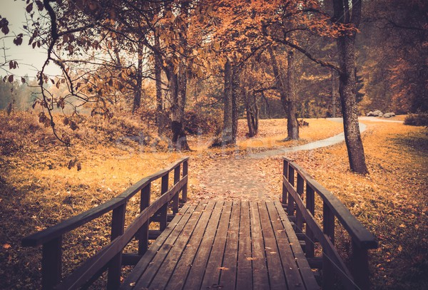 Walkway with wooden rails in an autumn park  Stock photo © Nejron