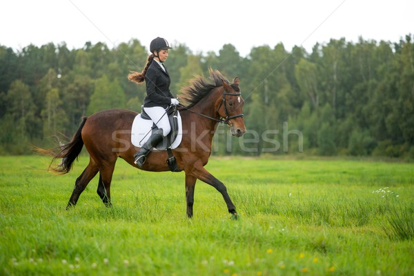 Young girl riding her brown horse outdoors  Stock photo © Nejron