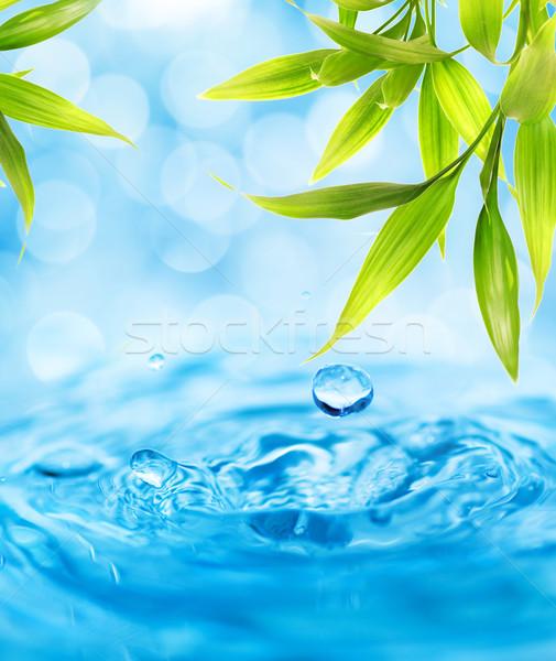 Foto d'archivio: Gocce · d'acqua · cadere · bambù · foglia · acqua · primavera