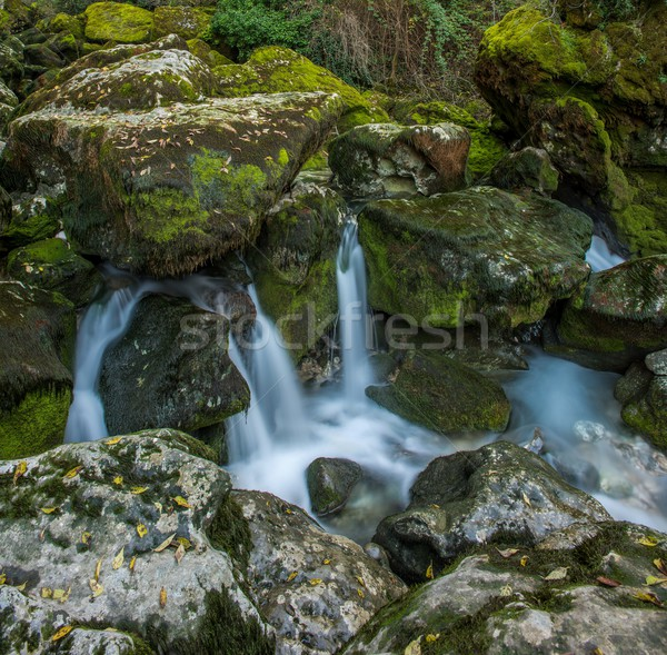 Stream running between rocks in  Fontaine-de-Vaucluse, France Stock photo © Nejron