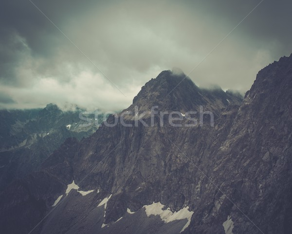 тумана высокий цветы природы пейзаж Сток-фото © Nejron