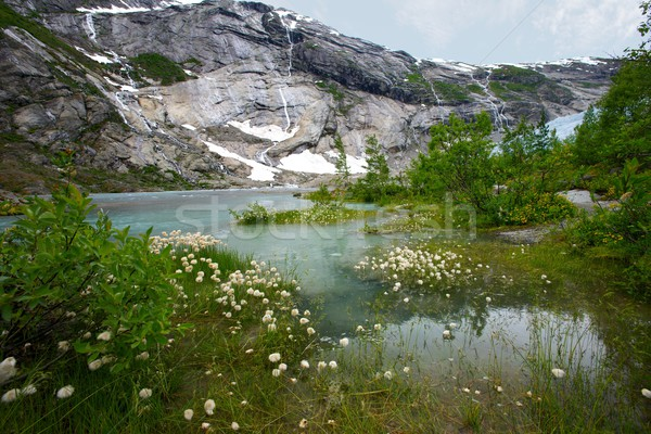美しい 湖 ノルウェーの 山 ツリー 自然 ストックフォト © Nejron